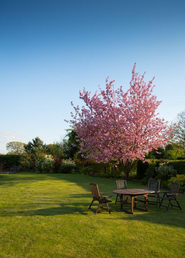 Projektowanie ogrodu, podstawowe zasady